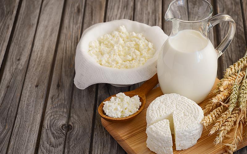 Сколько нужно молока для производства сыра?
