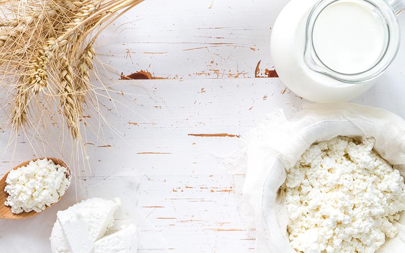 Сколько нужно молока для производства сыра